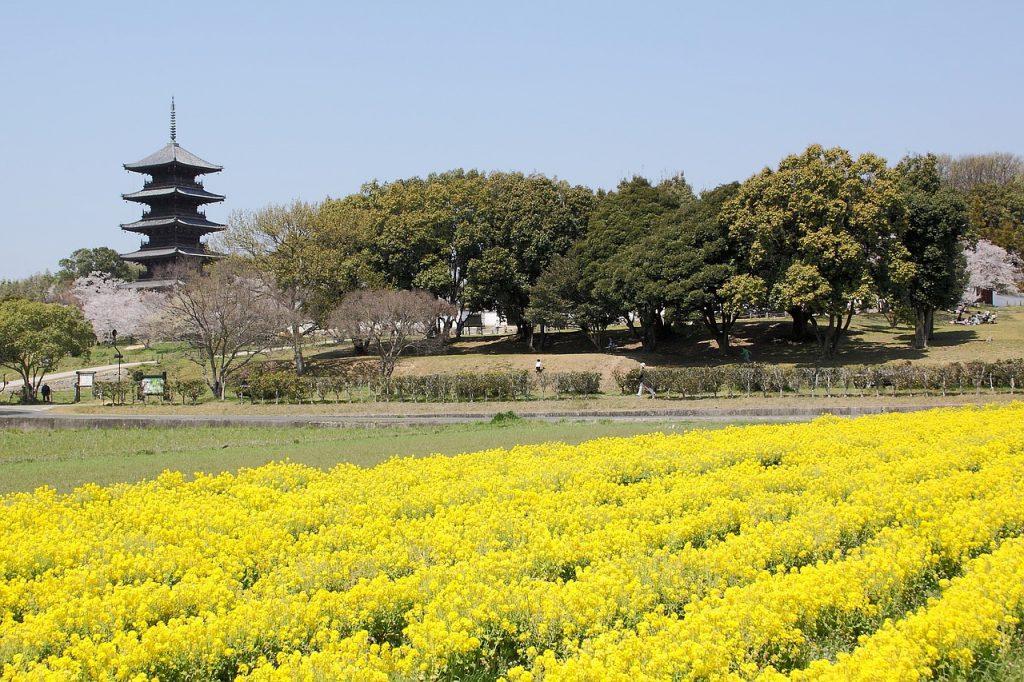岡山県で出会う方法10選!5人の体験談から分析!出会い系・スポット・イベントなどをご紹介